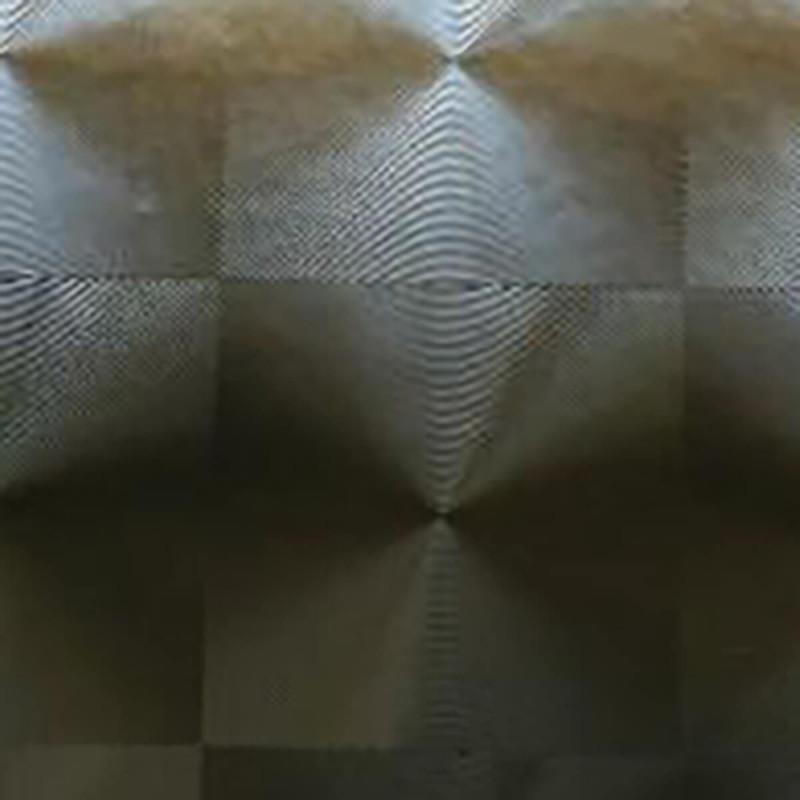 HOLOGRAMA PLATA
